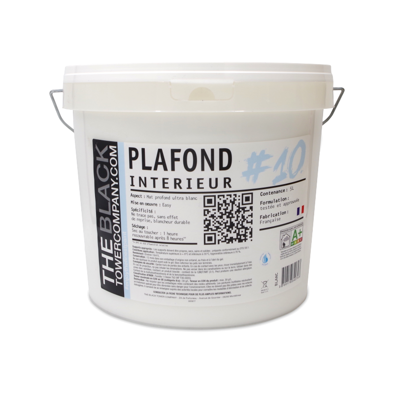 PLAFOND #10 Peinture finition Plafond mate acrylique