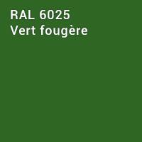 RAL 6025 - Vert fougère