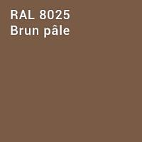 RAL 8025 - Brun pâle